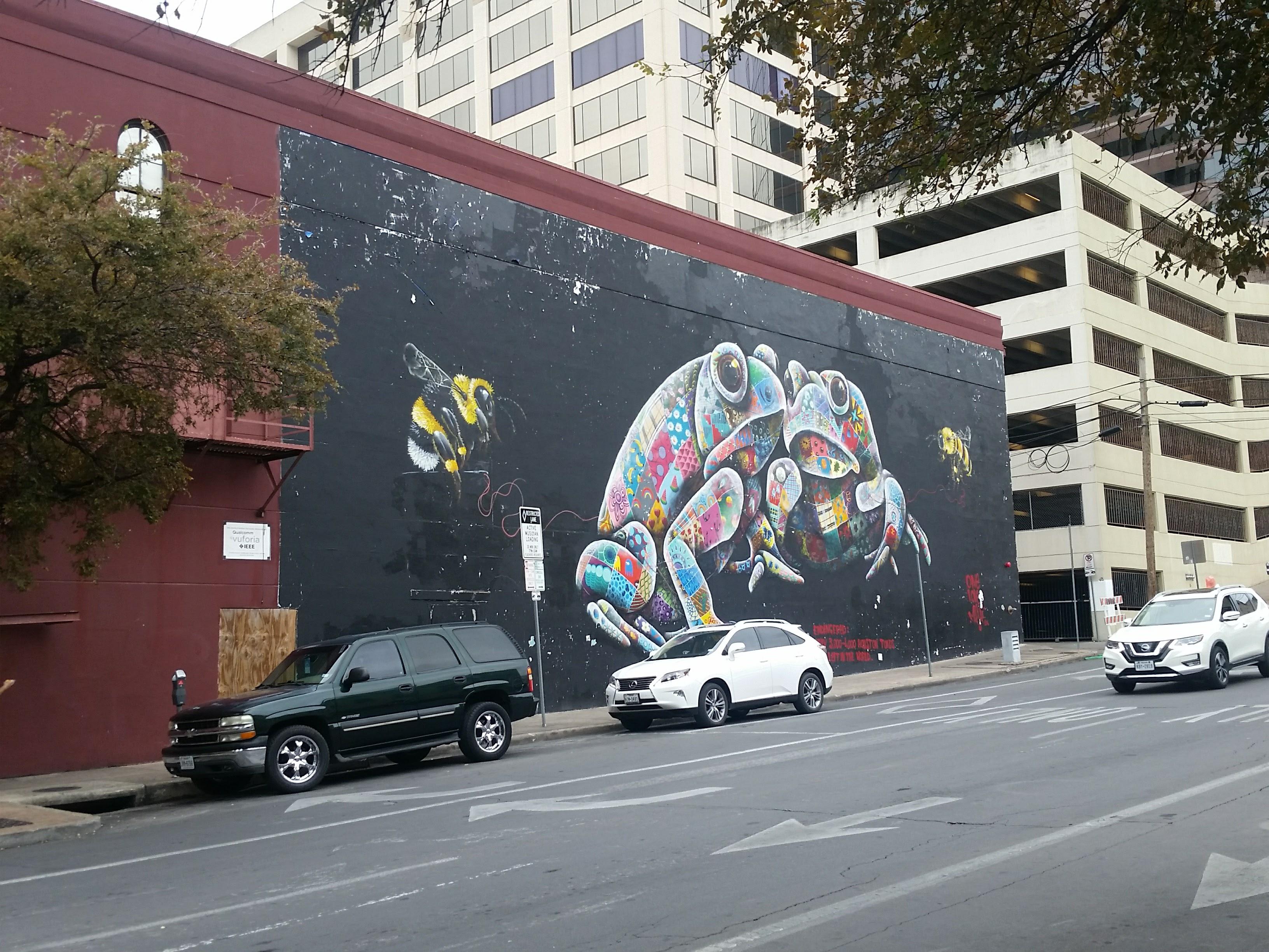 San Antonio & Austin, Texas