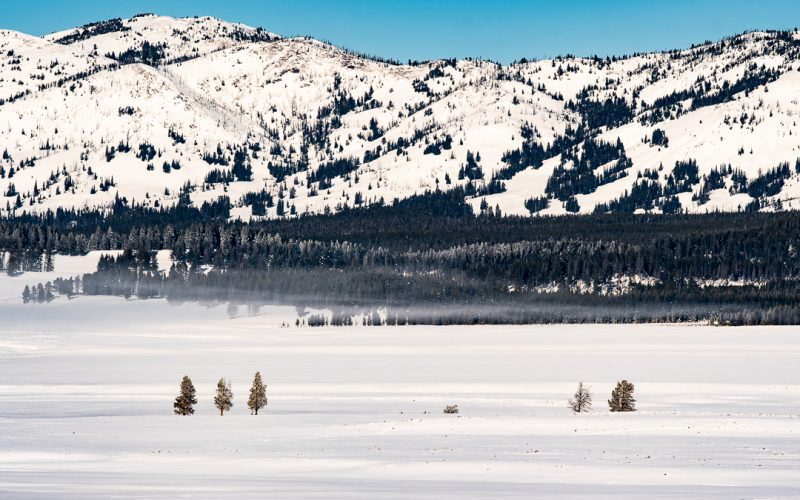 Yellowstone National Park: Winter