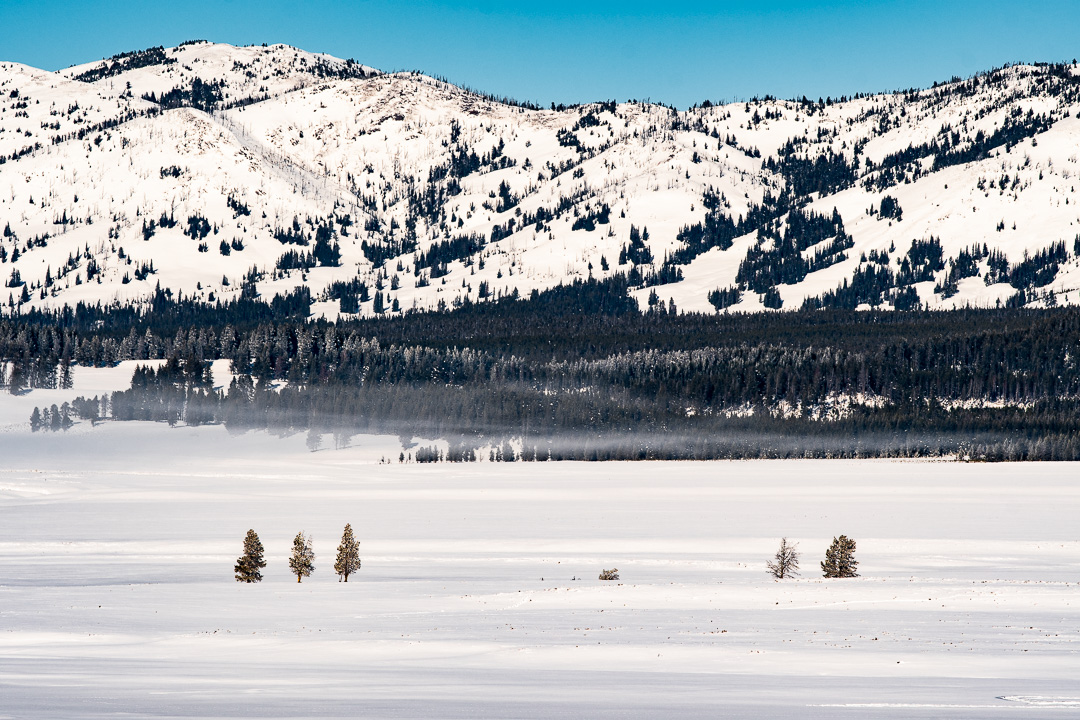 Yellowstone National Park: Winter