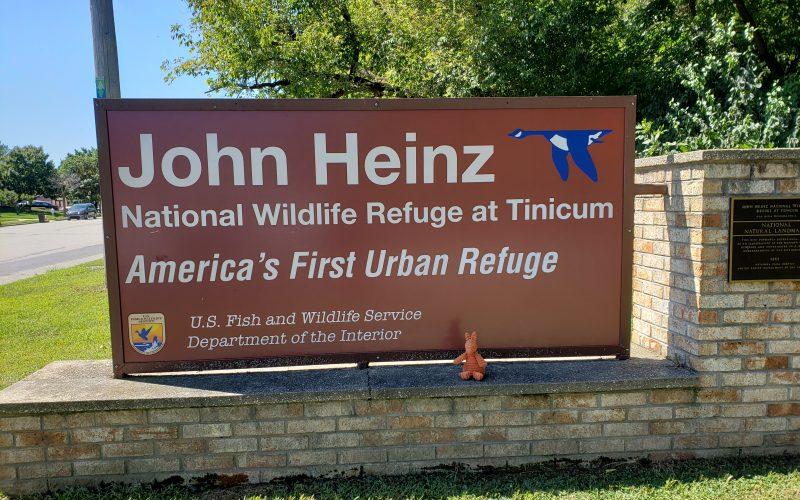 John Heinz NWR